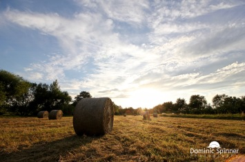 Aufgenommen mit: Canon EOS 550D // Objektiv: 10-18mm // ISO 100 // 10mm // f9 // 1/160
