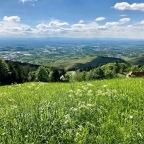 Maiwanderung zur Buchwaldhütte